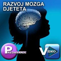 razvoj_mozga_djeteta_PV