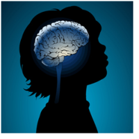Razvoj mozga